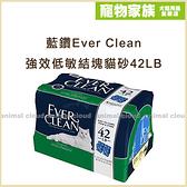 寵物家族-【免運】藍鑽Ever Clean 藍標-強效低敏結塊貓砂42LB(無香)