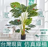 當天寄出 高仿北歐ins綠植 仿真植物 仿真樹 假樹 40cm龜背 擺設裝飾