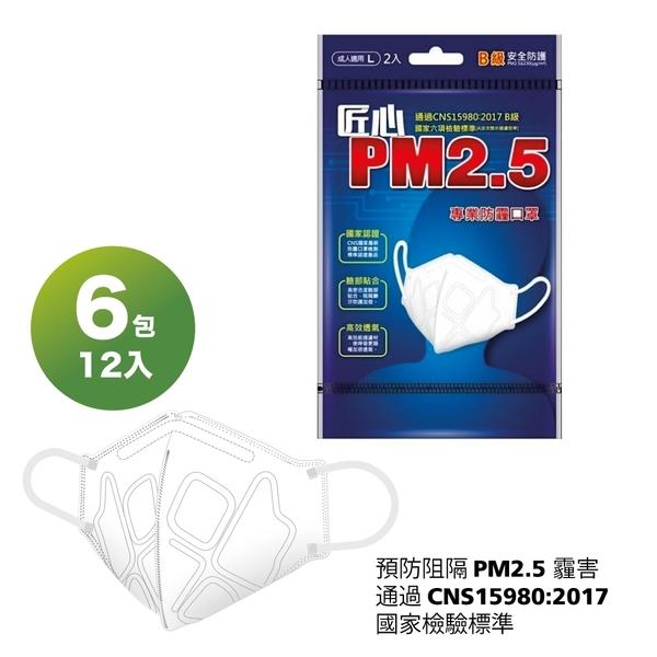 【卜公家族】【匠心】PM2.5專業3D立體防霾口罩(黑色)-2入/包 X6-免運