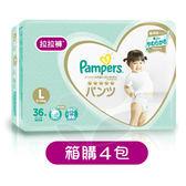 Pampers 幫寶適 新一級幫 拉拉褲/褲型尿布L【箱購36片x4包】【佳兒園婦幼館】