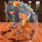 恐龍迪迦賽羅透明兒童雨傘男女孩小學生幼兒園卡通可愛公主長柄傘 小城驛站