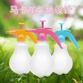 噴壺澆花噴霧瓶家用澆花噴壺噴水灑水壺氣壓式噴霧器園藝工具