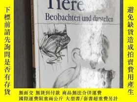 二手書博民逛書店Workshop罕見Zeichnen - Tiere (德語原文) 精裝版【館藏本】Y12480 Englis