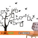 LISAN大尺寸壁貼 / 牆貼 B-108花草系列-好人緣樹 相框  自黏壁貼 無痕 -賣點購物