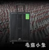 戶外音響木質拉桿便攜式移動音箱無線話筒 ys5465『毛菇小象』