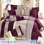 鋪棉床包 100%精梳棉 全舖棉床包兩用被四件組 雙人加大6*6.2尺 Best寢飾 6807-2