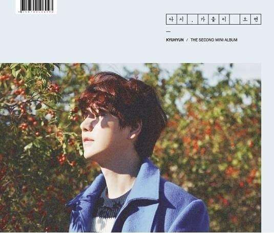 圭賢 第二張迷你專輯 再次秋來 台壓版 CD (購潮8)4719760108043