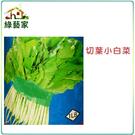 【綠藝家】大包裝A05.切葉小白菜種子200克