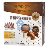 香檳茸子實體膠囊 60粒/盒◆德瑞健康家◆