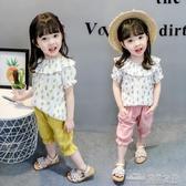 超洋氣女童夏裝套裝新款小清新小女童短袖兩件套女寶寶夏裝(聖誕新品)