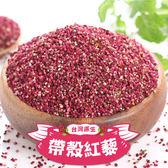 【愛上新鮮】台灣原生帶殼紅藜3包