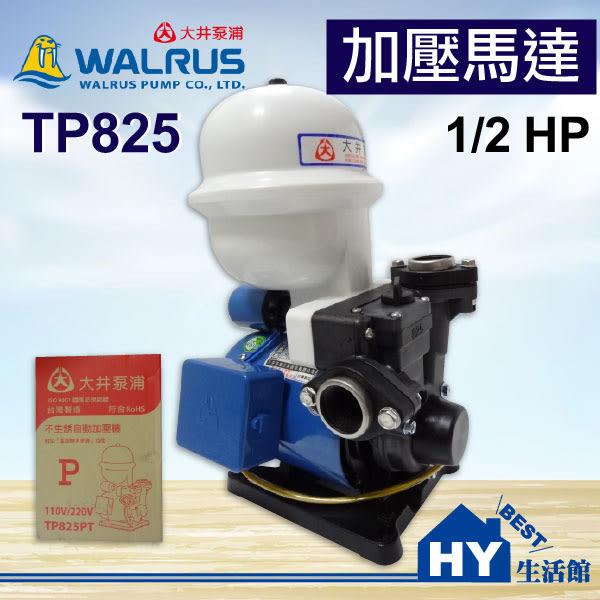 大井泵浦 TP825 加壓馬達。1/2HP 不生銹 塑鋼抽水機。附無水斷電