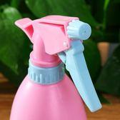 澆花噴壺小噴水壺園藝小型壓力澆水噴霧瓶
