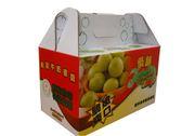 【季節限量】產地直送 鮮採3L牛奶蜜棗4kg/箱–波比元氣