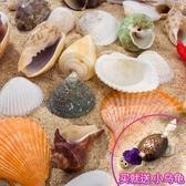 天然貝殼海螺珊瑚魚缸裝飾品拍攝道具工藝品微景觀地中海海星擺件 HOME 新品