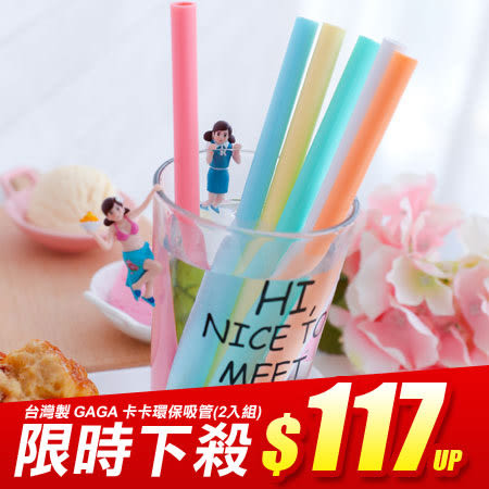 台灣製 GAGA STRAW 卡卡環保吸管(2入組) 卡卡吸管 環保 飲料 手搖飲 可拆洗 SGS檢驗合格
