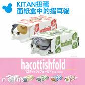 【KITAN扭蛋 面紙盒中的摺耳貓】Norns 蘇格蘭摺耳貓&衛生紙盒 可堆疊 日本轉蛋 公仔 玩具 裝飾