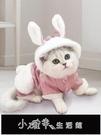 貓咪衣服小貓英短布偶貓貓寵物的防掉毛幼貓保暖可愛新年四腳冬裝【快速出貨】