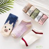 (交換禮物)短襪 襪子女淺口正韓可愛船襪女隱形夏季薄版女士短筒低幫運動