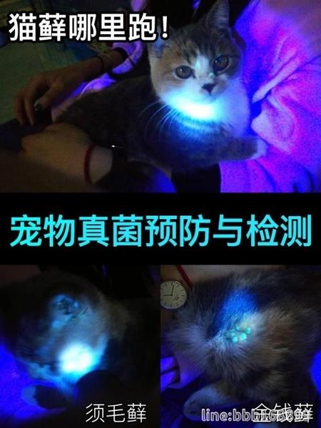 紅外線檢測器 紅外線逗貓筆器充電神器貓咪貓蘚燈伍德氏紫外線光檢測家用照貓尿 城市科技