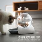貓咪飲水機 寵物自動飲水機器狗狗貓咪喝水器中小型犬泰迪喂水碗水盆用品