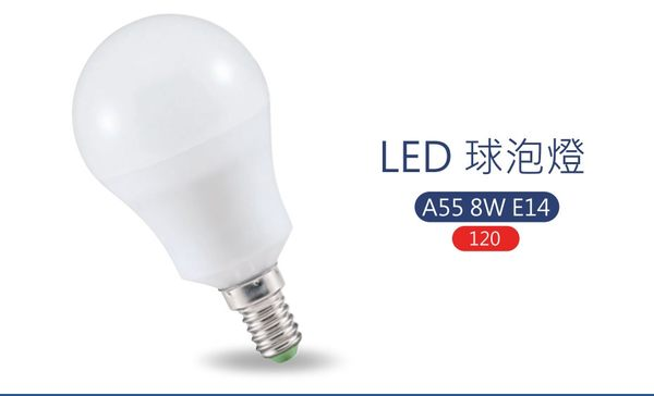 亮博士LED燈泡 球泡燈10W 高效光 E27燈座 白光/黃光 室內照明