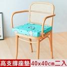 【奶油獅】森林野餐-久坐專用二合一高支撐記憶聚合紓壓坐墊-藍(二入)