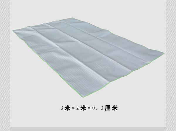 超大無拼接雙面鋁箔防潮墊 戶外野餐墊 加厚野營帳篷墊 地墊 3x2mx0.3cm 2x2mx0.9cm