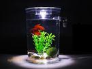 圓形款 自動換水 辦公室 懶人魚缸 小魚...