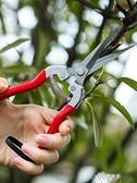 不銹鋼園藝剪刀果樹修剪器多功能摘水果花木剪鮮花樹杈花枝修 【快速出貨】