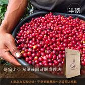 現烘【咖啡綠商號】哥倫比亞希望莊園日曬處理法(半磅)