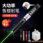 指星筆雷射筆鐳射筆USB充電樓盤指示筆逗寵物激光筆【勇敢者】