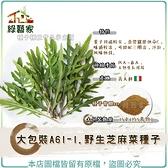 【綠藝家】大包裝A61-1.野生芝麻菜種子15克(約5萬顆)