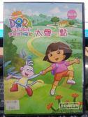 挖寶二手片-B15-021-正版DVD-動畫【DORA:愛探險的朵拉 14 雙碟】-套裝 國英語發音 幼兒教育