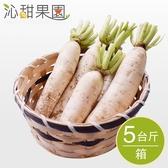 沁甜果園SSN.美濃白玉蘿蔔(5台斤/箱)﹍愛食網