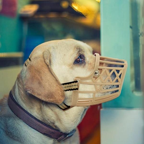 塑料狗口罩狗狗嘴套防咬防狗叫止吠器