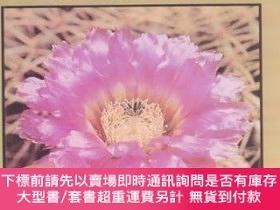 二手書博民逛書店Cactus罕見(A Lerner Natural Science Book) (English and Japa
