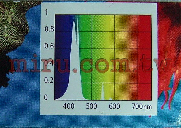 【西高地水族坊】英國Arcadia阿卡迪亞 MARINE BLUE 420 ACTINIC 海水長效培養T5藍燈管(39W)