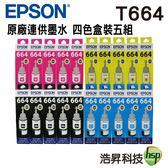 EPSON T664 四色五組 原廠填充墨水 適用L100 L110 L120 L200 L220 L210 L300 L310等
