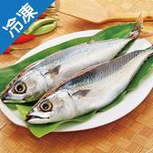 南方澳鹹鯖魚(350g±5%)/尾【愛買冷凍】