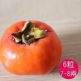 梨山甜柿8A6粒(免運)