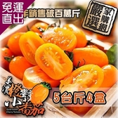 家購網嚴選 美濃橙蜜香小蕃茄 5斤/盒x4盒 連七年總銷售破百萬斤 口碑好評不間斷【免運直出】