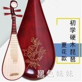樂器紅木軸相硬木琵琶成人兒童民族彈撥初學入門 aj6800『黑色妹妹』