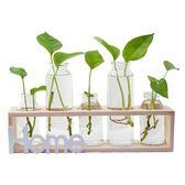 春季熱賣 創意小夜燈玻璃花瓶水培植物小清新房間擺件客廳插花餐桌綠蘿容器 挪威森林