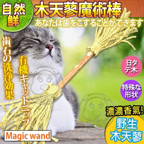【zoo寵物商城】自然鮮系列》木天蓼魔術棒貓玩具NF-024