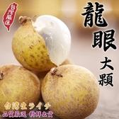 【果農直配-全省免運】台灣龍眼X5斤±10%(大顆)