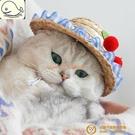 寵物帽子狗狗貓咪頭套編織草帽拍照飾品頭飾小狗狗夏季防曬配飾【小獅子】