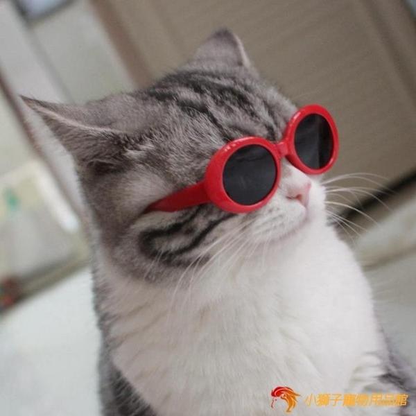 搞怪貓咪眼鏡寵物太陽眼鏡拍照搞笑貓貓配飾個性墨鏡【小獅子】