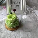 永生花DIY材料包,小玻璃罩,附製作說明書,9*13cm