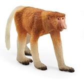 Schleich 史萊奇動物模型 長鼻猴_SH14846